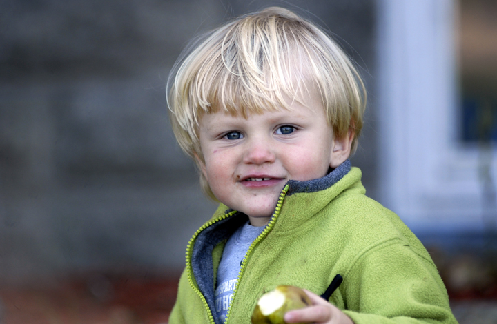 This is my sister Jill's youngest son.  We had a great time picking pears and hanging out.