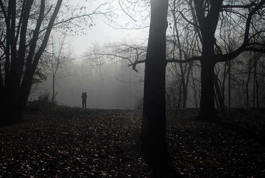 Got lucky a week or so ago and the whole family went for a walk in the beautiful morning fog.